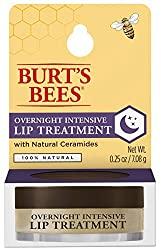 Divine Style Amazon Beauty, Burt's Bees overnight intensive lip treatment